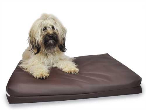 Hundebett - Wasserbetten / PediBed