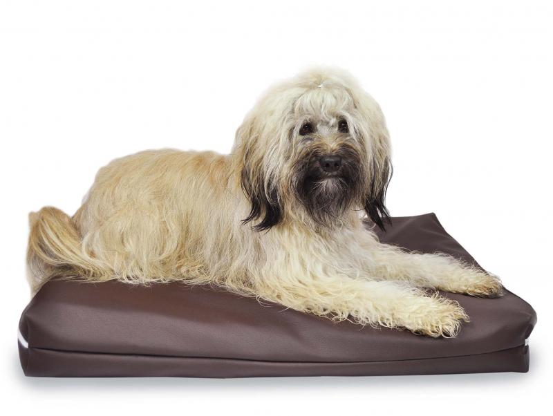 Hundesofa preisvergleich die besten angebote online kaufen for Mh betten
